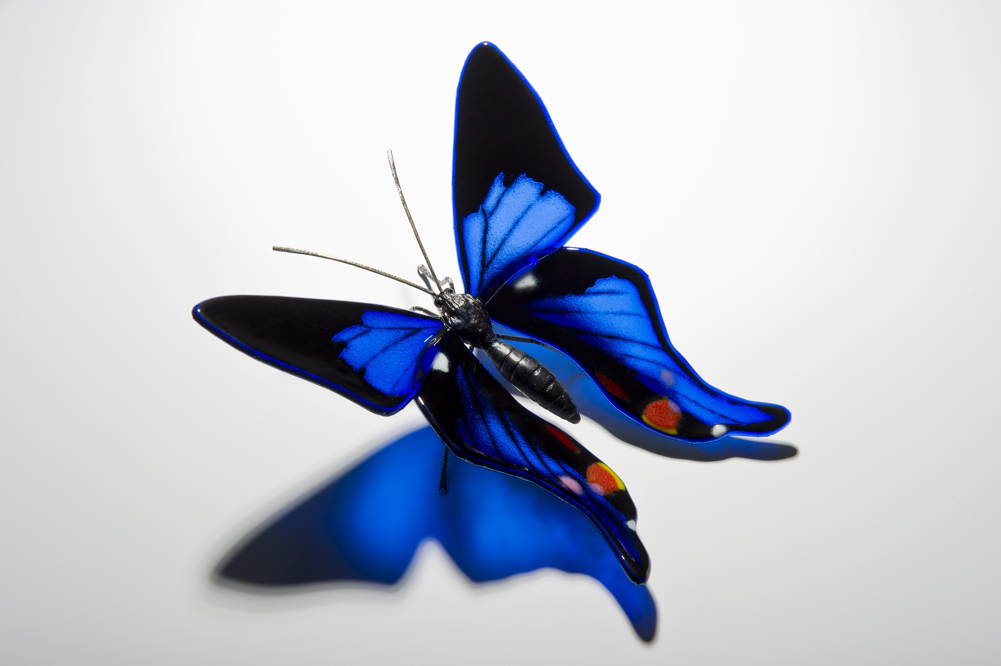 The Best of Glass Sculpture and Fusing Art: Laura Hart glass sculpture The Best of Glass Sculpture and Fusing Art: Laura Hart Periander Metalmark Butterfly 2 min