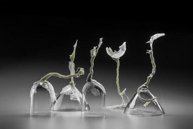 The best of glass sculpture art: Zuzana Kubelková glass sculpture art The Best of Glass Sculpture Art: Zuzana Kubelková Zuzana Kubelkova Sui Generis biorhythms